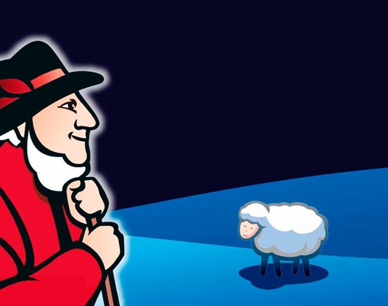 baldriparan ovcak a ovce 1920x600 02.JPG.rendition.1280.1280